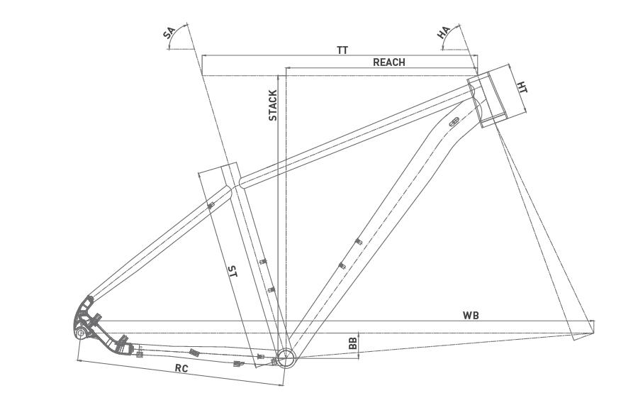 Geometría WRC TEAM NX 29 2020